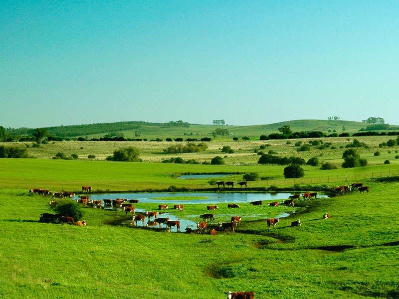 Uruguay naturaleza en mayo